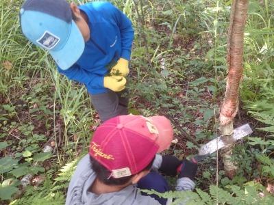 http://www.muji.net/camp/minaminorikura/blog/DSC_0911111111111112.jpg