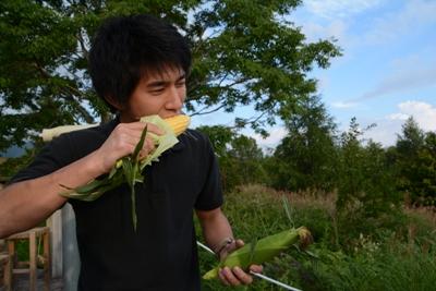 http://www.muji.net/camp/minaminorikura/blog/DSC_7394.JPG