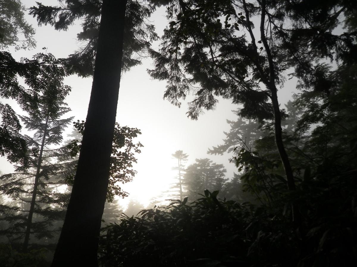 http://www.muji.net/camp/minaminorikura/blog/IMGP0117.JPG