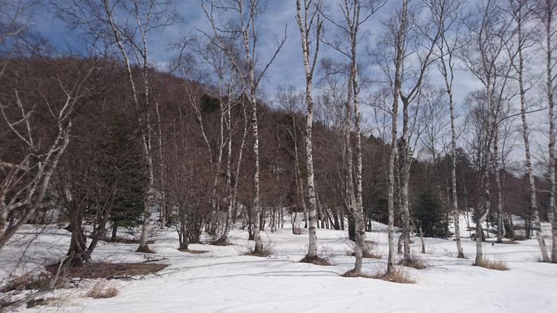 http://www.muji.net/camp/minaminorikura/blog/bDSC_5448.jpg