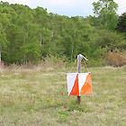 outdoorfield_orientaring1.jpg