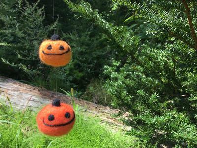 空飛ぶかぼちゃ.JPG