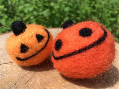 かぼちゃ大.JPG