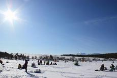 氷上わかさぎ釣り 2019 釣果表