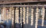 高野豆腐のパワー