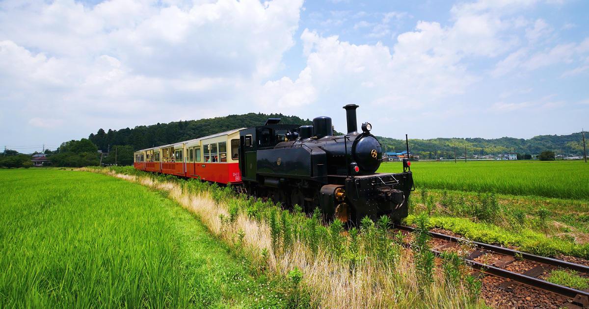 身近な自然と人をつなぐ ─里山トロッコ列車─