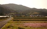 都市と自然の間を整える ─暮らしの近くの里山を探そう─